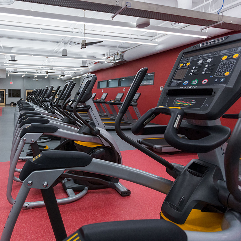 Elliptical machines in the fitness center.